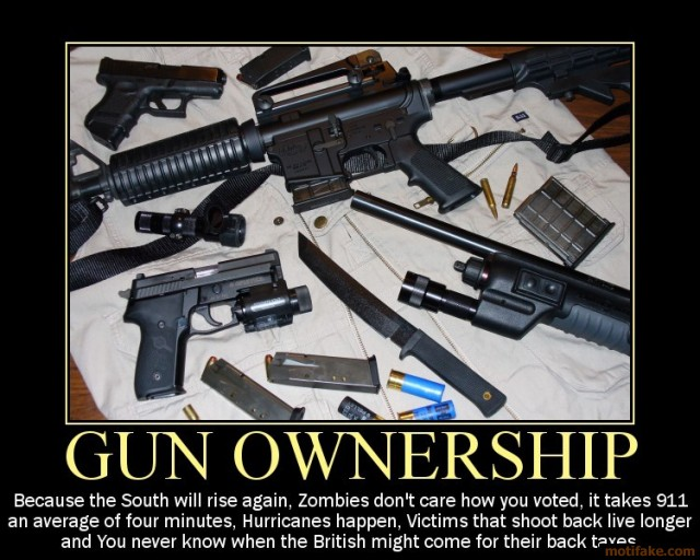 Gun ownership demotivational poster 1221603758